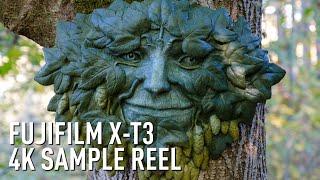 Fujifilm X-T3 4K Eterna sample reel by DPReview.com