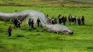 Aina za nyoka wanao meza watu - These snakes swallows people