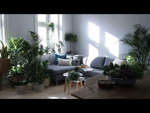 Dønn grønn – Samme stue – Se forskjellen!
