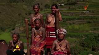 Spirit of Asia: Discover the Legend of the Kalinga Tribal Tattoos