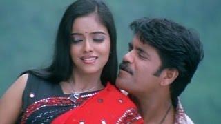 Shivamani Telugu Movie || Sun Sun Video Song || Nagarjuna, Asin