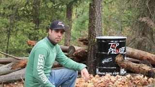 Baiting Black Bears: Tips and Techniques