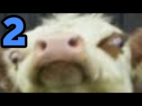 Xxx Mp4 Cow Mp4 The Second WoC 3gp Sex