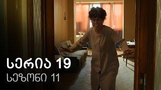 ჩემი ცოლის დაქალები - სერია 19 (სეზონი 11)