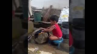 Baby's very very funny videos telugu