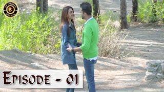 Iltija - Ep 01   Affan Waheed - Tooba Siddiqui - Top Pakistani Dramas