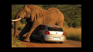Moments You Wouldn't Believe if They Weren't Recorded! #7