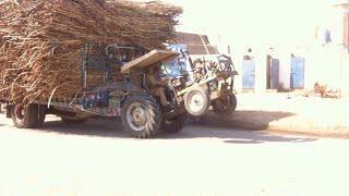 Massey Ferguson 240 With Heavy Sugarcane Trolley Stunt on Road | Tractor Stunt