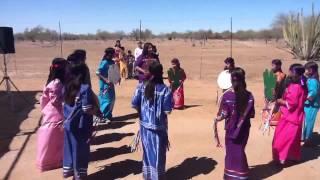 Niños de la tribu papago