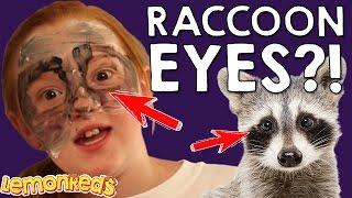 Frog Face & Raccoon Eyes Challenge - LemonReds Episode 9   Face painting tutorial fail