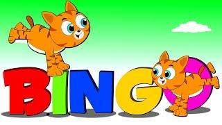 Lagu Kanak Kanak Melayu - Pak Atan Ada Kucing Nama Dia BINGO | BINGO Kids Rhyme in Malay