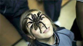 7 حيوانات أخطر مما تتوقع تعيش مع أصحابها ويعتبرونها مثل أولادهم !!