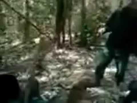 Xxx Mp4 Chakma Army CHT Rangamati Chakmaland 3gp Sex
