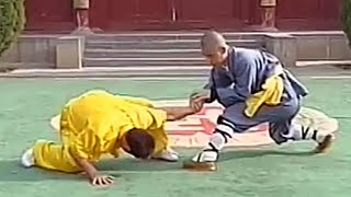Shaolin kung fu combat: 32 locks (qin na)