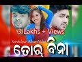 Tor Bina Bhuban New Sambalpuri Full HD Video 2017 Copyright Reserved mp3