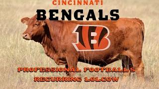 The Cincinnati Bengals: Professional Football