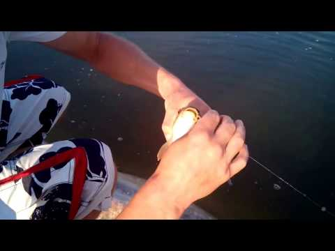 как поймать рыбу в озере новичку видео
