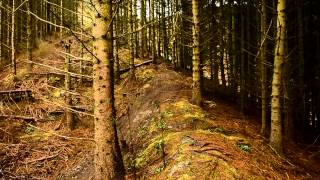 Hope Technology - Once Upon a Trail - Adam Brayton