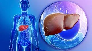 هل تعلم بما أوصانا الرسول حتى لا نصاب بالتليف الكبدي !