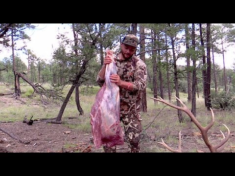 HOW TO QUARTER AN ELK GUTLESS METHOD