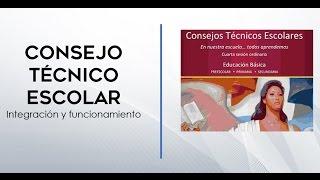 Consejo Técnico Escolar, integración y funcionamiento