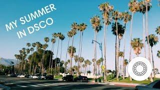 my summer in dsco