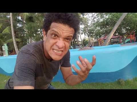 Xxx Mp4 Conociendo El Manatí Acuario De Santo Domingo VLOG El Pachu Show 3gp Sex