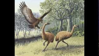 Top 10 Most Dangerous Prehistoric Birds