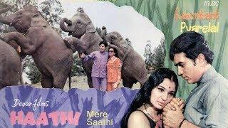 Chal Chal Chal Mere Haathi (ช้างเพื่อนแก้ว) - Kishore Kumar - เนื้อร้องและแปลไทย