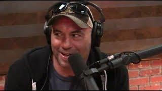 Joe Rogan Explains DMT to Danica Patrick
