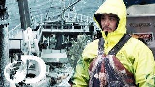 Cornelia Marie Member Takes Major Tumble On Icy Deck | Deadliest Catch