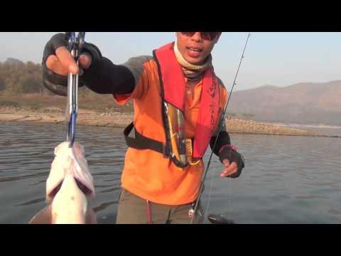 ป๊อปเปอร์ปลากระสูบ ลุยก้อ กบน้าแจ็ค by jacklure 2014 past 10