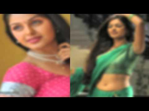 Actress Sends New Photo Album seeking for Chance - Dinamalar Video Dated Jan 2016