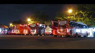 Ini TERMINAL, GARASI, apa PARKIRAN!! Ruame tenan parade bus. Indahnya Terminal Jati Sore Hari