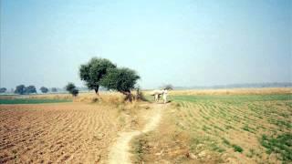 fatima bhairey wali--chitti meri mehli.wmv
