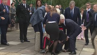 Prince William helps elderly dignitary who falls to the ground