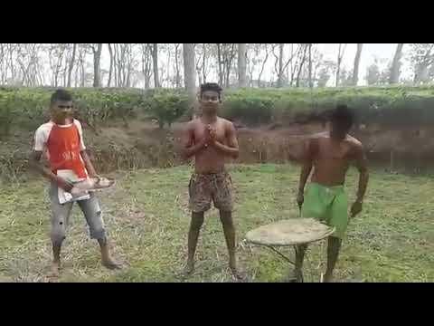 Xxx Mp4 Comedy Video Hores Tanti 3gp Sex