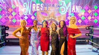 First glimpse of WrestleMania 34 set revealed