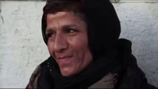 عمو نوروز  شاهین نجفی - محله دروازه غار تهران