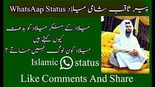 Pir SaQib Shami WhatsAap Status urdu in milad