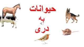 Animals in Dari