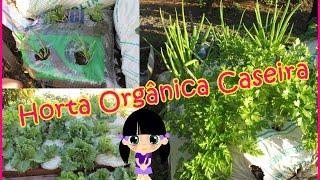 Faça você mesma Horta Orgânica Caseira - Direto da Roça :D
