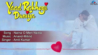 Yaad Rakhegi Duniya : Naina O Meri Naina Full Audio Song | Aditya Pancholi, Rukhsar |