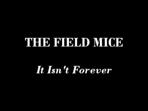 The Field Mice - It Isn't Forever Video Clip
