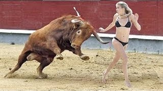 Funny Videos Compilation   Cow fight with people