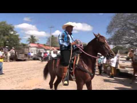 Fiesta Ejidal 2016 Col 18 de marzo