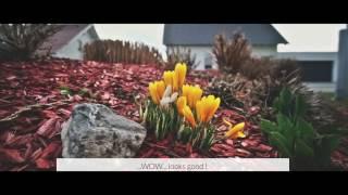 Kinolook / Chinematic look mit der Sony Alpha 6000 und MAGIX Video deluxe Premium 2017