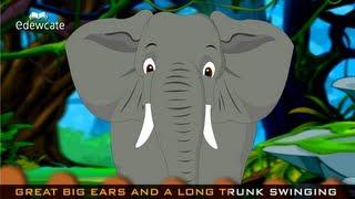 Edewcate english rhymes | Going to the Zoo Tomorrow Nursery Rhyme