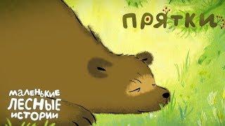 Маленькие лесные истории 🍂 Прятки 🐻 Новая серия