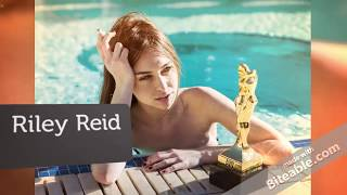 Top 15 The Best Performer Adult Video Stars of The Year